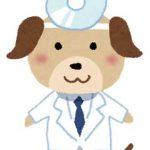 獣医師になるには?仕事と資格