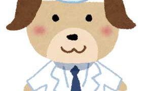 獣医師が活躍できる職場・就職先