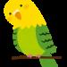 ペット・鳥(インコ・文鳥等)の知識を証明する資格種類